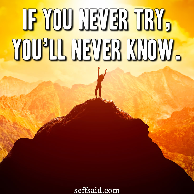 'If you never try, you'll never know.' You never know what you can accomplish until you try. Start working towards and achieving your goals today by taking action. Great inspiration quote. Check out the 15 all time best motivational quotes that have the power to inspire success at http://seffsaid.com/motivational-quotes-success/