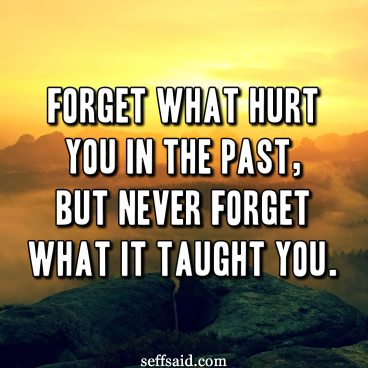 Forget what hurt you in the past, but never forget what it taught you. - Shannon L. Alder. Read the best inspirational life quotes of all time on life, friendship, happiness, love, change, growth and family at http://seffsaid.com/best-inspirational-life-quotes-of-all-time/