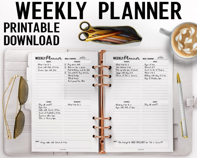 2 Page Weekly Planner